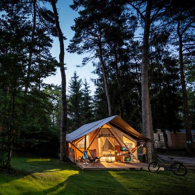 Camping nature foret landes