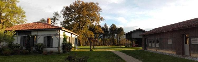 La Canopée-Arjuzanx-maison d'hôtes