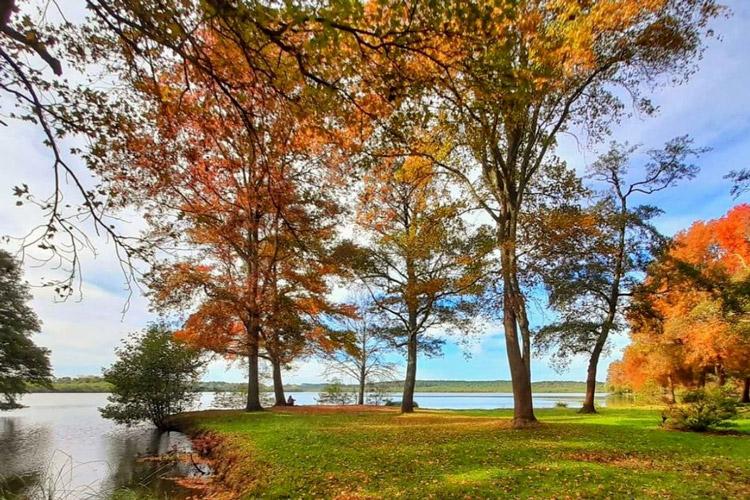 lac-soustons-landes-pointe-des-vergnes-automne