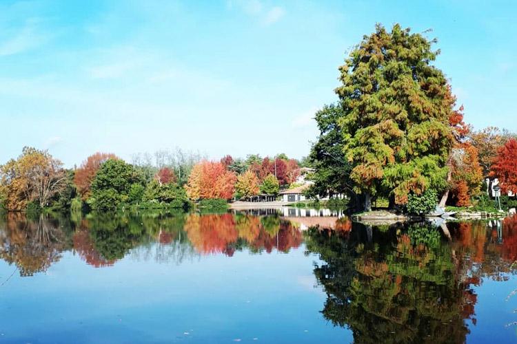 Vue du lac de Dax en Automne