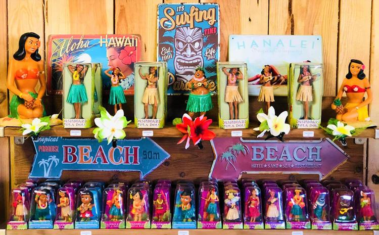 esprit des iles hula dashboard