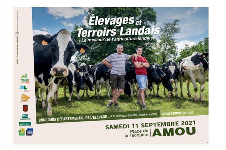 Concours départemental élevage quoi faire landes